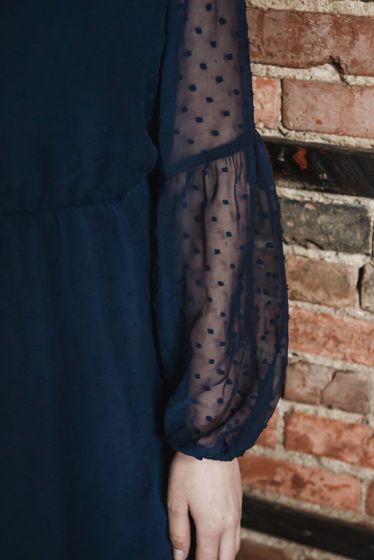 Navy Swiss Dot Dress S-XL