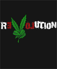 Marijuana Revolution Women's V-Neck