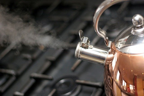 boiling stainless steel kettle