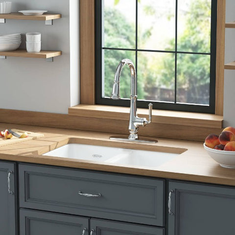 "American Standard Delancey 30"" White Double Bowl Cast Iron Undermount Sink - Annie & Oak"