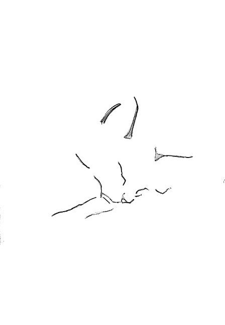 4 of the Cutest Drawings of a Cat Sleeping