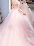 Baby Pink fluffy Tulle Long Sleeves Lace Top Prom Dress,B069