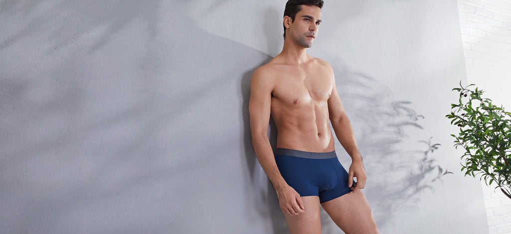 3 Packs Premium Cotton Boxer Briefs