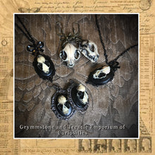 Faux Taxidermy cat and bat skull jewellery collection