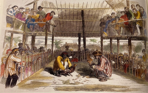 Cock-Fighting at Manilla (1857) by Charles Wirgman - two Filipino men in barongs fight their roosters in a cockpit