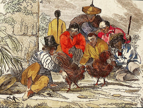"""""""Hahnenkämpfe"""" [Cockfights], 1835, by Louis Auguste de Sainson shows a cockfight in the street and Filipino men in Barong Tagalog"""