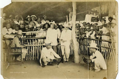 """""""Men at a cockfight in Manila"""" circa 1910 from the Donald Hiram Stillwell Photograph Collection. The men wear white camisa de chino or barongs"""