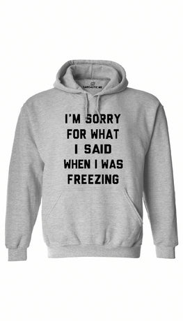 I'm Sorry For What I Said When I Was Freezing Gray Hoodie | Sarcastic ME