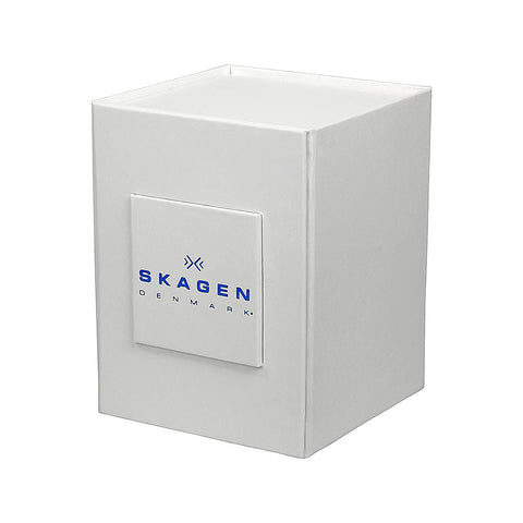 Skagen Classic Silver Dial Stainless Steel Mesh Men's Watch 355LGSC - The Watches Men & Co - 4