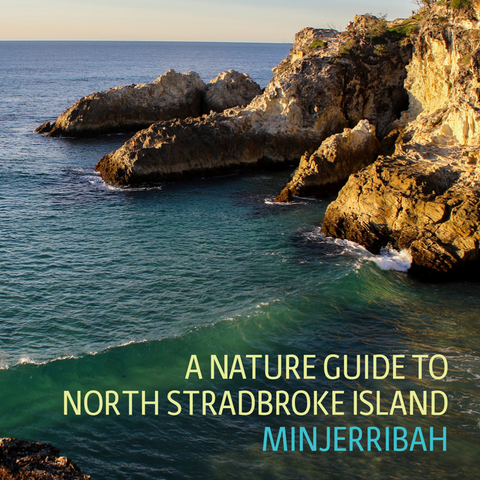 A Nature Guide to North Stradbroke Island-Minjerribah