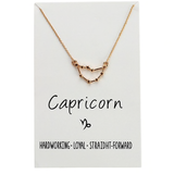 In Stock Necklace Capricorn The Constellation Necklace The Omnia Design Company