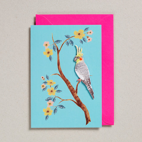 Iron on Patch Card - Bird 8