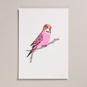 Risograph Print (A4) - Pink Budgie