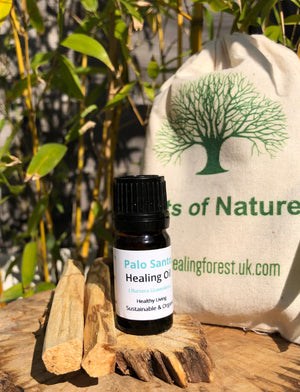 Our Palo Santo Healing wood