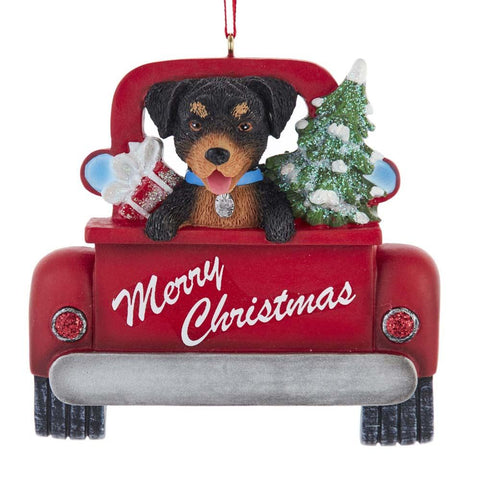 Dog In Truck Rottweiler