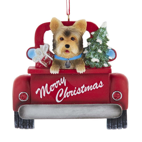 Dog In Truck Yorkshire Terrier