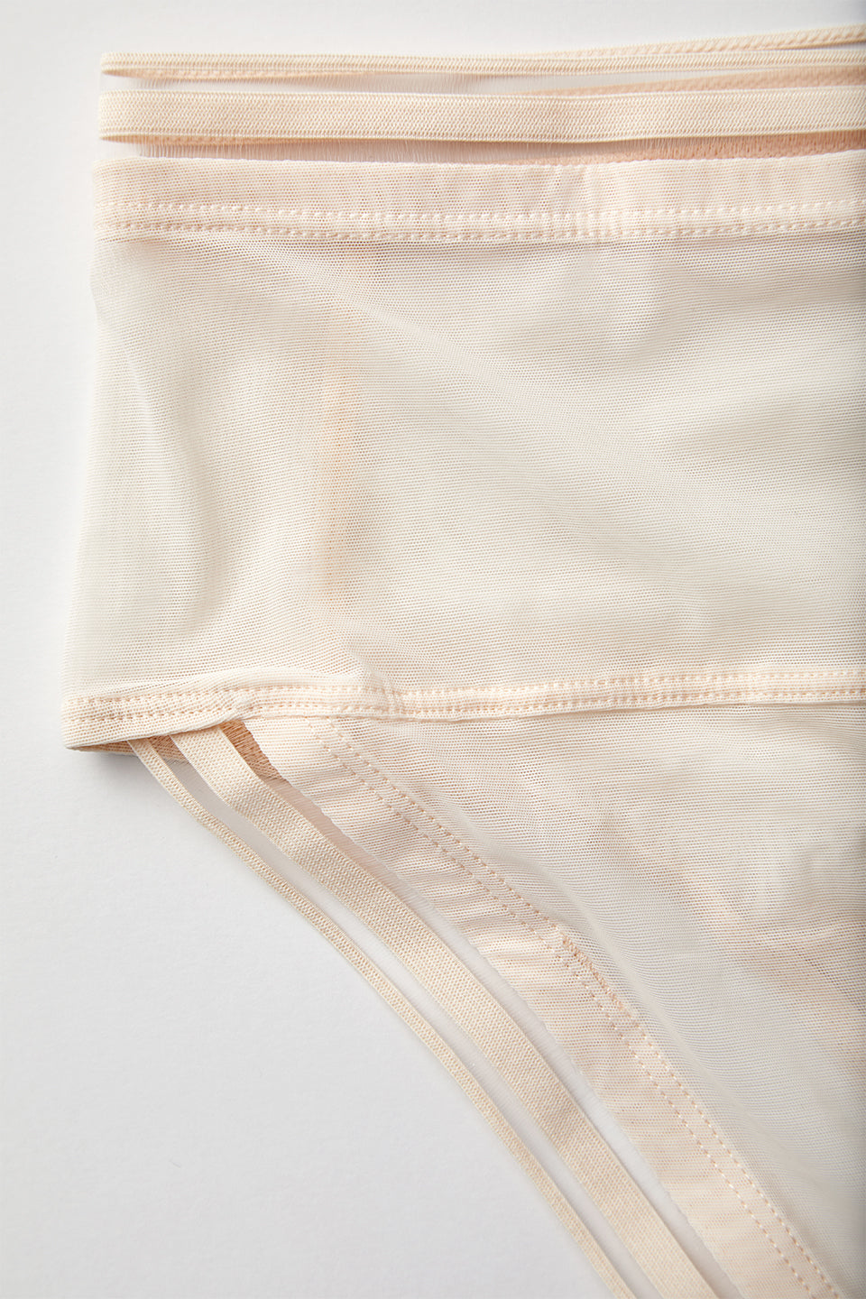 PALOMA HIGH BRIEF
