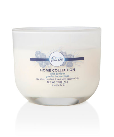Febreze Home Collection Scented Jar Candle, Almond Sugar, 12 oz, Single