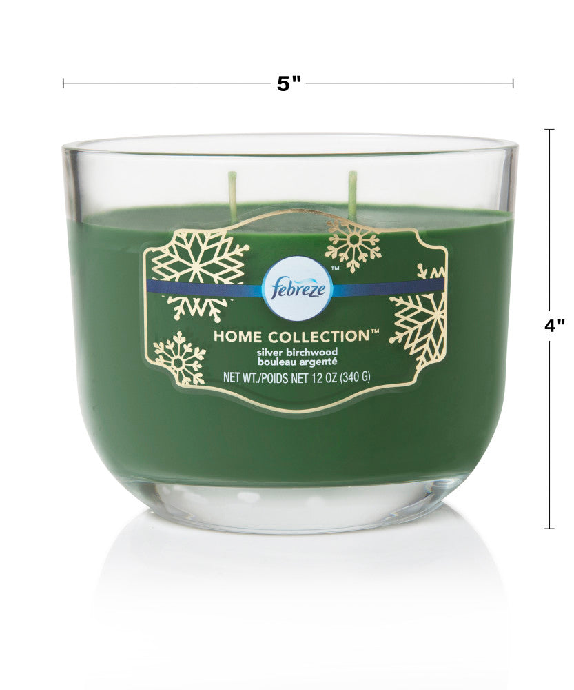 Febreze Home Collection Scented Jar Candle, Birch, 12 oz, Single - Febreze Home Collection