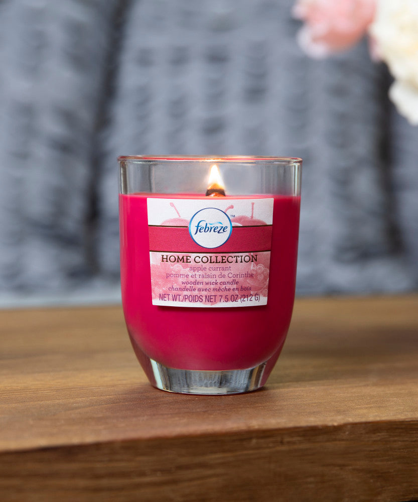 Febreze Home Collection Scented Jar Candle, Apple Currant, 7.5 oz, Single - Febreze Home Collection