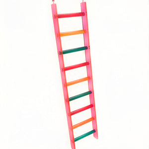 Plastic Bird Ladder Toy Photo