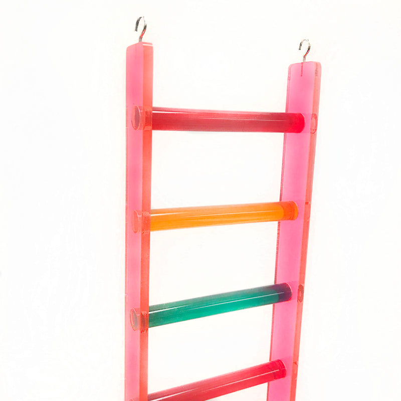 Plastic Bird Ladder Toy