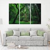 Lush Forest 3 Piece Canvas Wall Art
