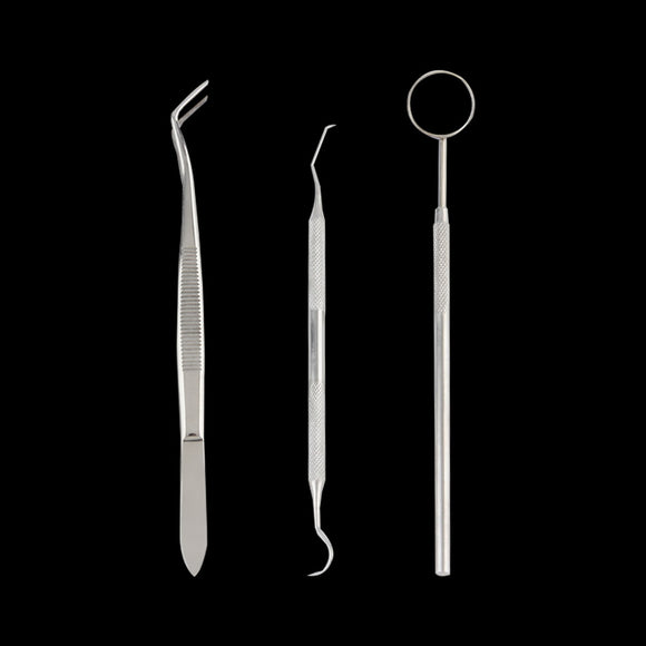 1set Stainless Steel Dental Instruments Mouth Mirror Probe Plier Tweezers - Beltran's Enterprise