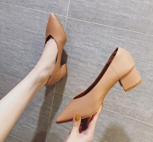 Sexy High Heel Pumps Women Office Shoes Pointed Toe High Heels Elegant Shoes - Beltran's Enterprise