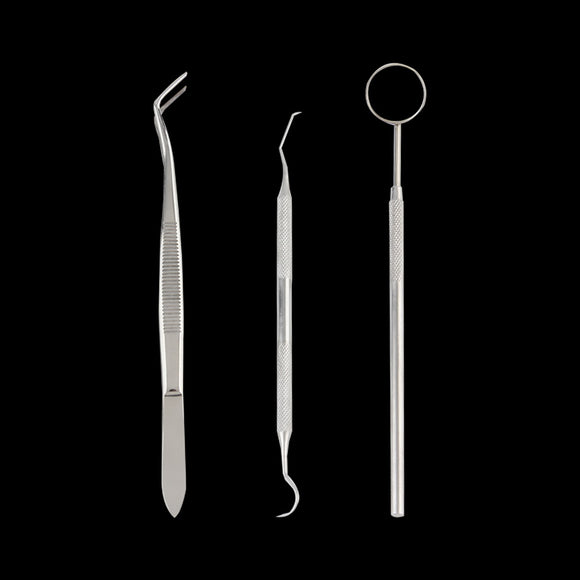 Dental guide Mirror Probe Plier Tweezers Teeth Tooth Clean equipment Kit Dentist machine for oral examination Stainless Steel - Beltran's Enterprise