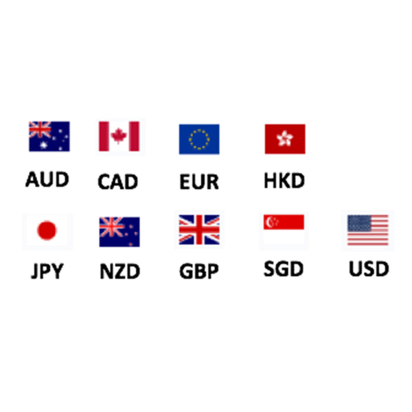New Feature - International Currency Checkout!
