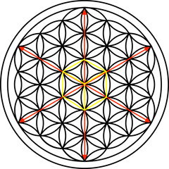 Flower-of-Life-Axis