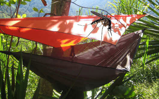 How to Bug-Proof Your Camping Hammock