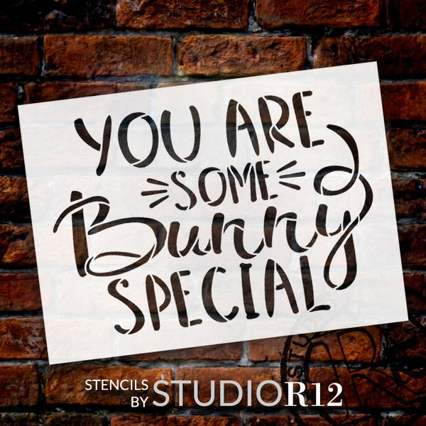 You are Some Bunny Special Stencil by StudioR12 | Fun Easter Word Art | DIY Farmhouse Home Decor | Paint Wood Signs | Select Size | STCL5613