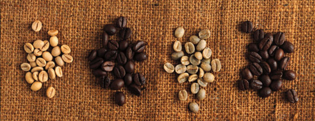 Arabica vs. Robusta Coffee Beans