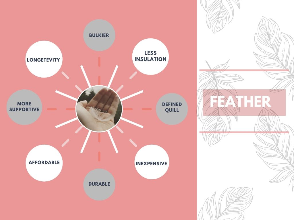 Advantages of feather