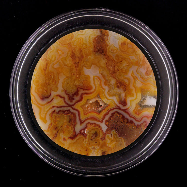 Graveyard Point Plume Agate - Regency Rose