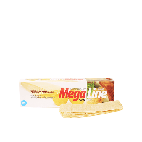 Mega Line Chips Mushroom and Sour Cream Taste - 100g Snackoo