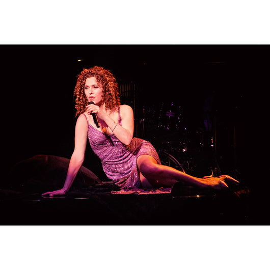 Bernadette Peters in Concert - Aurora, Illinois (2007)