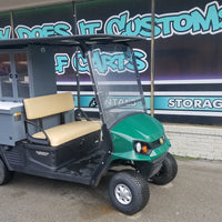 2 Passenger Gas Carts