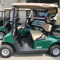 2 Passenger Electric Golf Carts