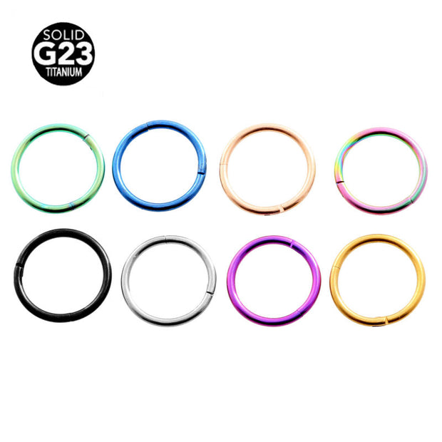 Hinged Segment Ring Titanium G23 Nose Piercing Labret Lip Nipple