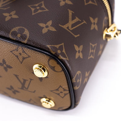 Louis Vuitton Vanity PM Reverse Monogram 2020