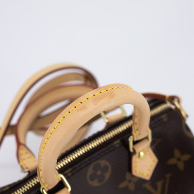 Louis Vuitton Speedy Nano Monogram