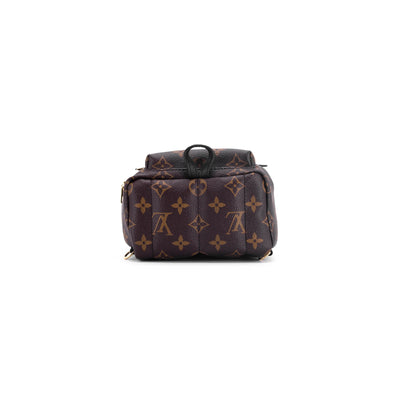 Louis Vuitton Palm Spring Mini Monogram (New Zipper)