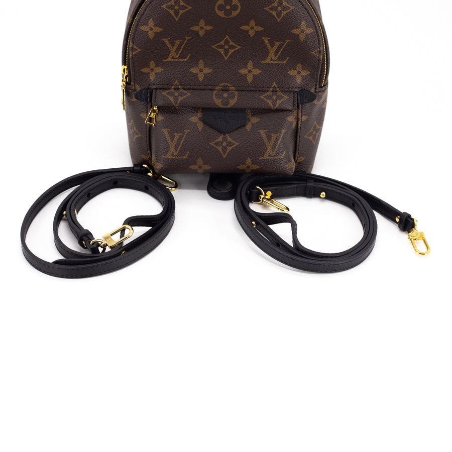 Louis Vuitton Palm Spring Mini Monogram