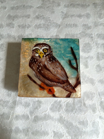 Small Capiz Shell Box - Wise Brown Owl