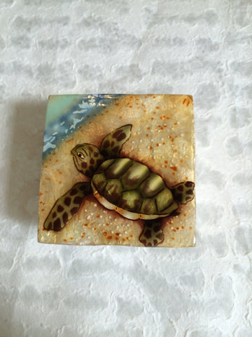 Small Capiz Shell Box - Turtle on the Beach