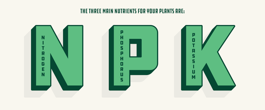 How To Choose The Best Hydroponic Nutrients for Weed