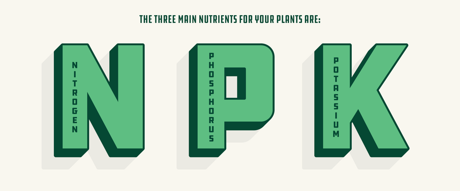Chapter 7: How to Use Hydroponic Nutrients and Get Your Best Yield Ever
